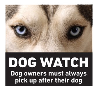 Dog Watch Campaign